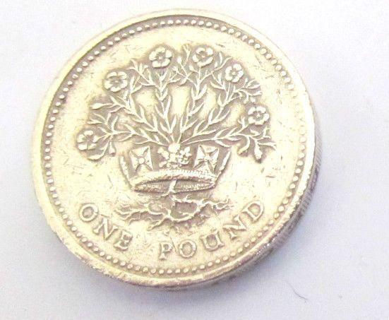 1991 Uk One Pound Coin Irish Flax Plant Very Rare 1