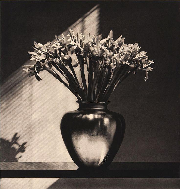 Robert Mapplethorpe, copper plate photogravure