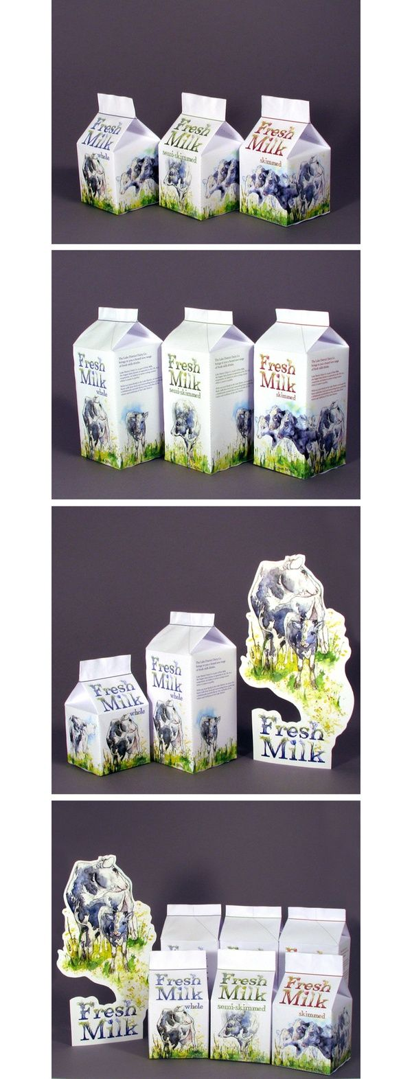 Dairy Cows Series and Milk Packaging by Amy Holliday, via Behance.