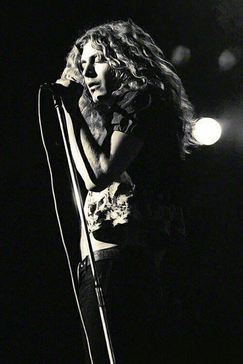 Robert Plant, Led Zeppelin                              …