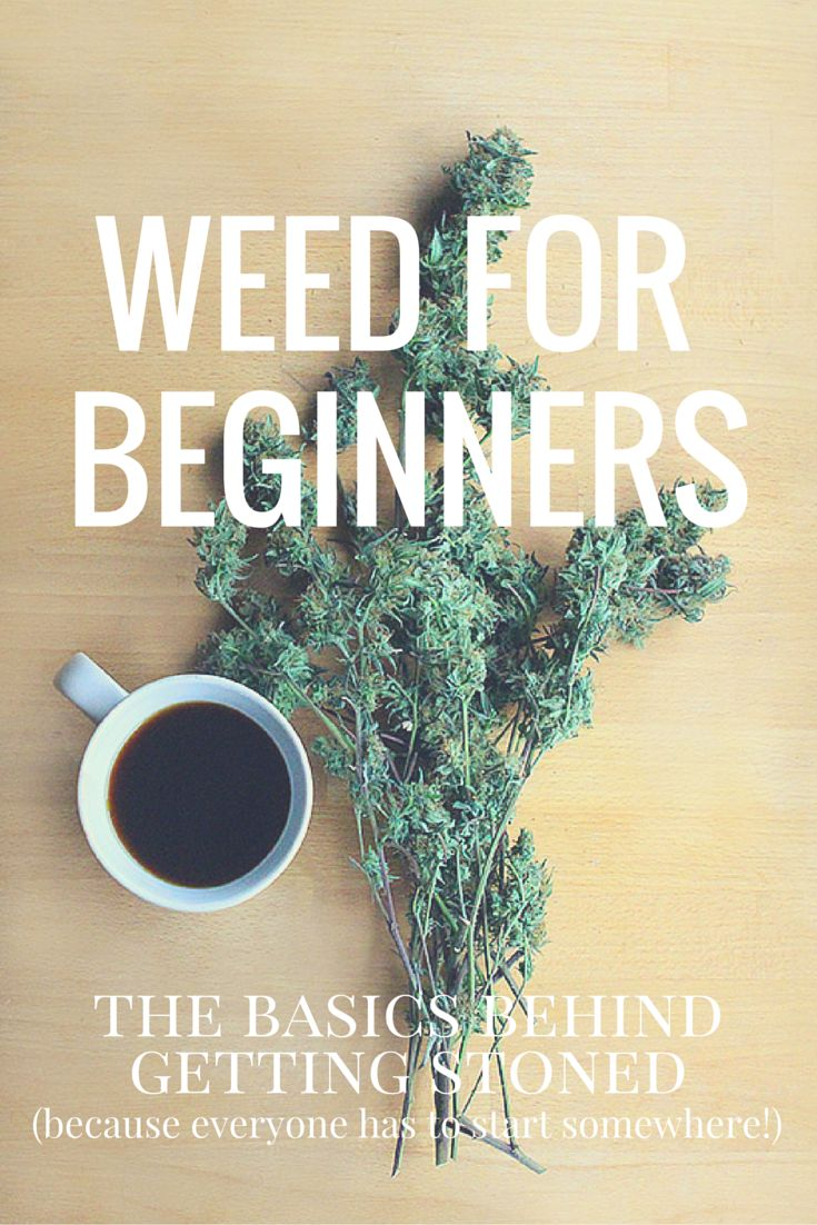 """Weed for Beginners"""