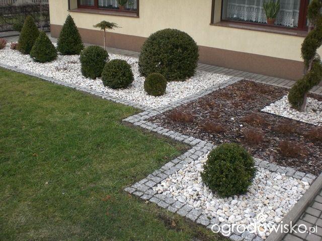 Ogród mały, ale pojemny;) - strona 28 - Forum ogrodnicze - Ogrodowisko