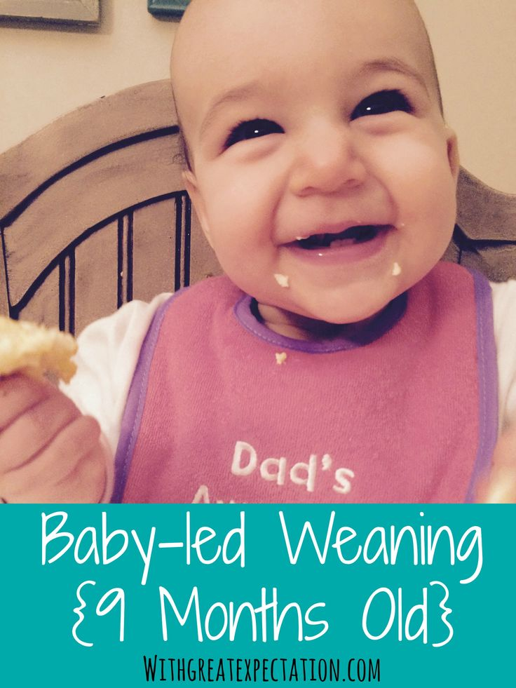 baby led weaning guidelines nhs