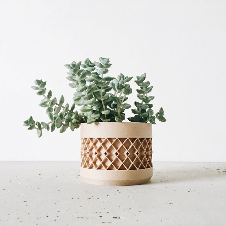 Indoor wood planter AZTEK original planter gift   …