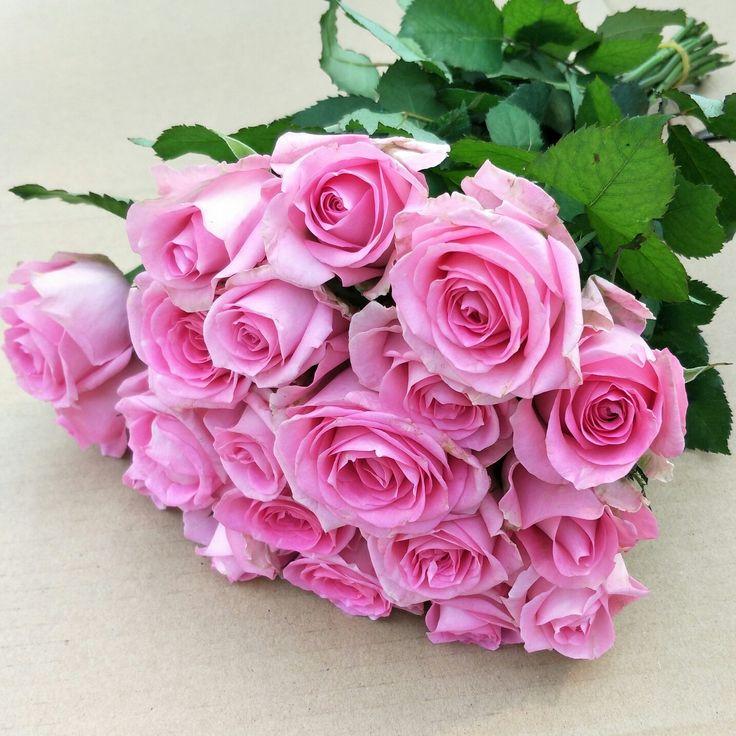 композиции найти картинки крупные букеты розовых роз ваш суд