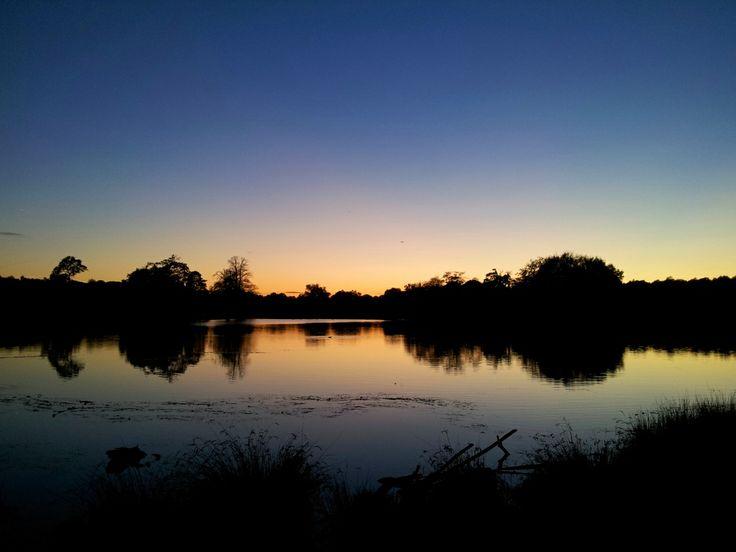 Sunset, Richmond Park