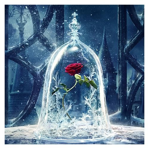 DIY Diamond Painting Red Rose Under Frosty Bell – craft kit