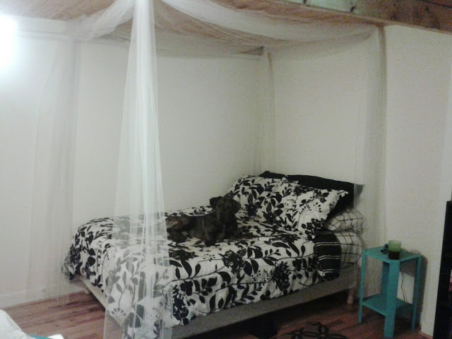 Diy Canopy Bed With Tulle Inexpensive House And Room Ideas Pinterest