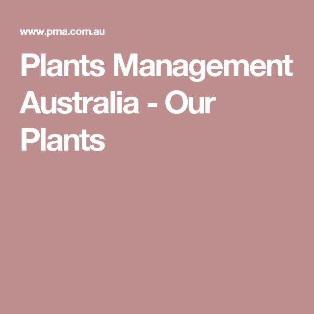 Plants Management Australia - Our Plants