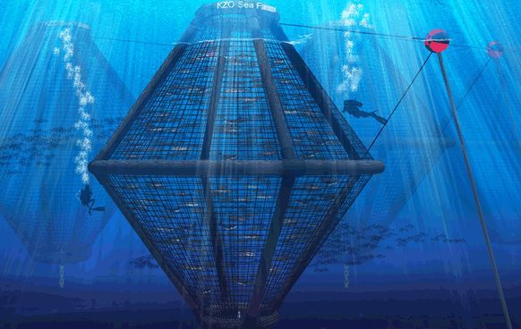 Sea cage aquaculture, 99% of the planetary living space is water, with a population growing a billion per decade ocean business is the next big thing to come, http://yook3.com, Wilfried Ellmer