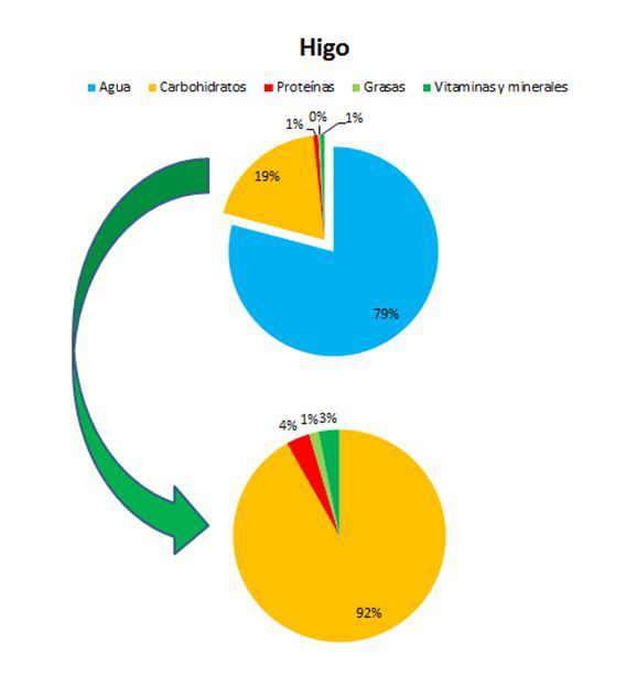PROPIEDADES DE LOS HIGOS