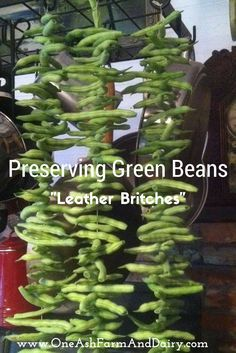 Green beans are a staple food here at One Ash. They seem to go with almost every meal and we really enjoy them. They are also something that we grow really well in our gardenRead More...