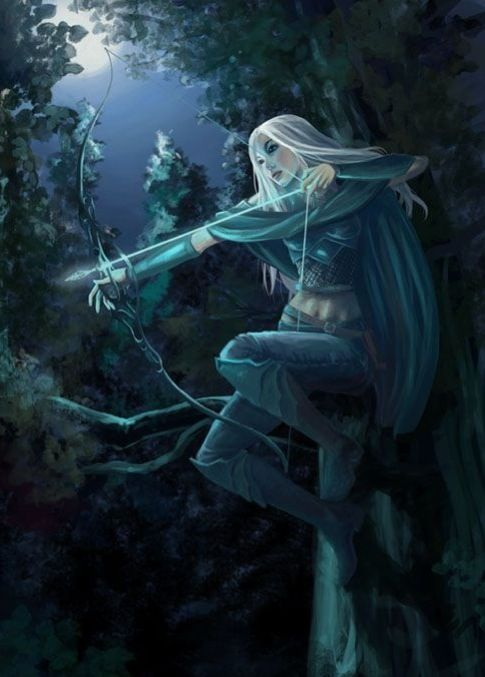 Night elfess, neutral coexistent with humans. They are skilled archers and close fighters with daggers.
