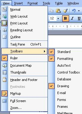 Using The View Menu In Microsoft Office Word 2003