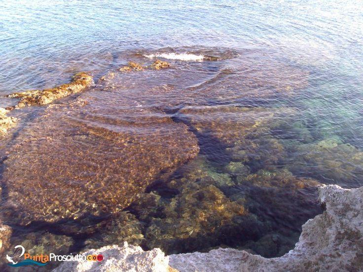 Punta Prosciutto - Punta Prosciutto - Luoghi, attività ed eventi nel salento