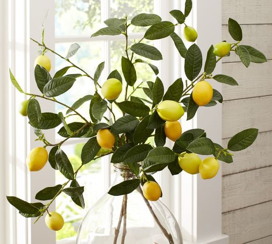 Fixer Upper S1 E1 Lemon Branches In Vase On Dining Room