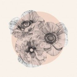 black and gray poppies