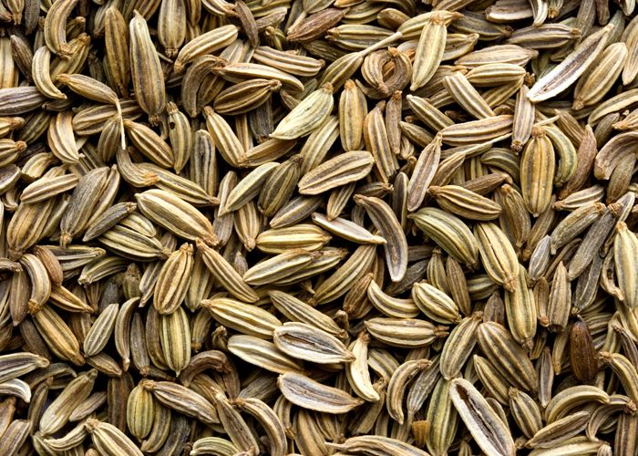 Home Remedy for Gas and Bloating:  1. Add a few fennel seeds in a pot of hot water, and then boil it for five minutes on a low temperature. Strain the solution and then drink it. You can also chew the fresh fennel leafy plants if you can bear the taste. Else you can take a mixture of fennel, cardamom and mint leaves and boil them in water to make a concoction that can help during stomach gas. This is very effective Home Remedy for Gas and Bloating: