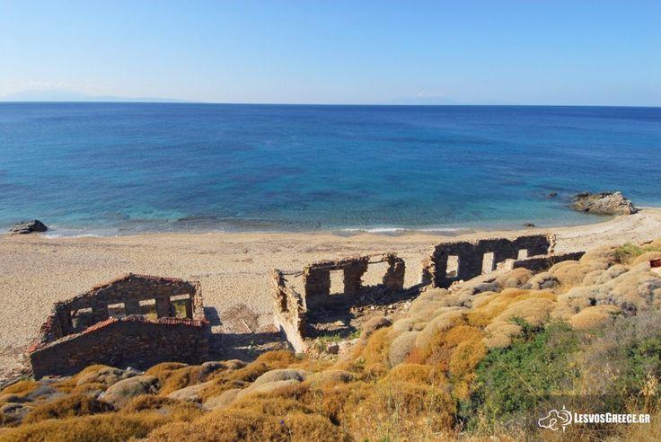 Idyllic beaches near Plomari - Tourist Guide of Mytilene: Holiday Lesvos Greece