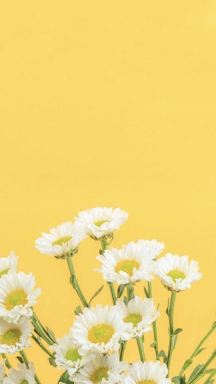 Yellow Wallpaper Aesthetic