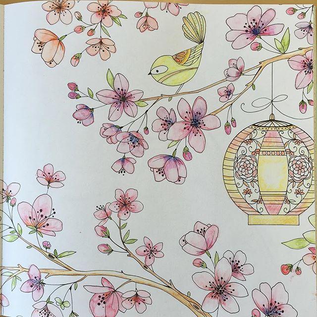 Joyousbloomstocolor On Instagram Color Pencil TechniquesColor DrawingsAdult ColoringColoring BooksColouringColor