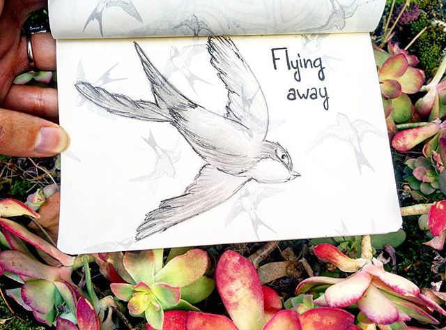 Flying away 🌿🍃🏵 🎨 #art #doodle #artist #artistic #artists #arte #dibujo #myart #artwork #illustration #graphicdesign #graphic #color #colour #colorful #painting #drawing #drawings #markers #paintings #watercolor #watercolour #ink #creative #sketch #sketchaday #pencil #cs6 #photoshop #beautiful