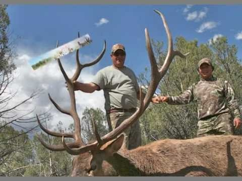 Wouldn't big mule deer kill on arizona strip