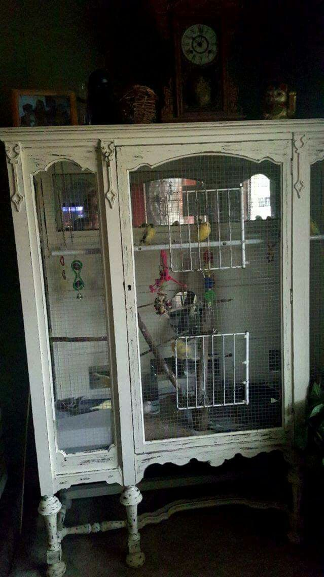 canary cage #aviariesdiy