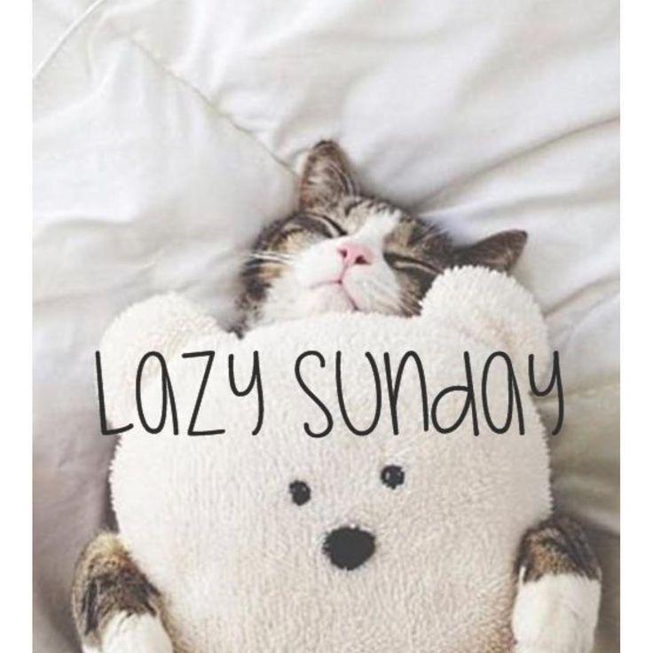 Sunday mornings are for lazing... #sunday #lazysunday  #australia #best #dentalsupplies #bigbrands #unbeatableprices #dentalgram #dentalmemes #dentist #dental #dentistry #dentalsurgeon #cosmeticdentist #cosmeticdentistry #dentalpractice #whitening #dentalhygienist #dentalassistant #smiles #teeth #dentalsupply #adamdental #loveadamdental