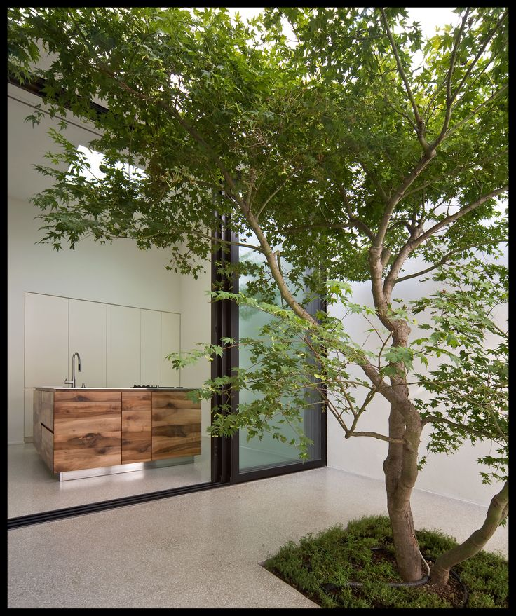 Best 25 modern courtyard ideas on pinterest fire pit for Courtyard landscaping ottawa