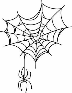 tela de araña, amor.