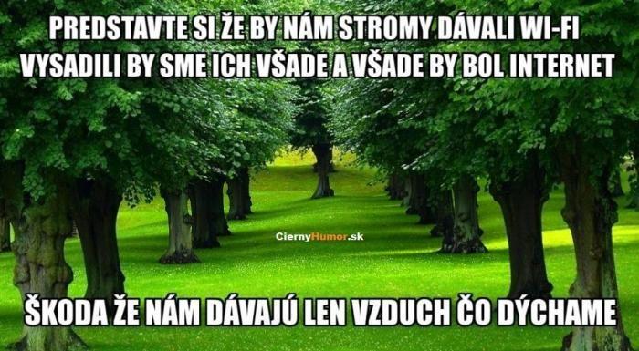 http://www.modrykonik.sk/blog/lucineckalu/album/zamyslenie-na-kazdy-den-ei2lih/24428892/