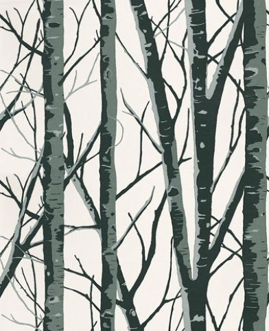 Birch (1904/905) - Prestigious Wallpapers - This design gives the effect of a mysterious Birch wood with its crossed and entwined sleek branches.  Available in 9 colours – shown here in onyx black and silver on white.Please ask for a sample for true colour match.