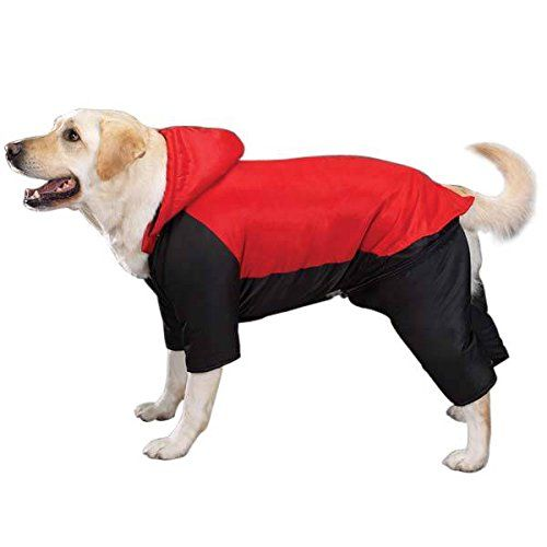 141 best Dog Costumes images on Pinterest   Dog costumes ...