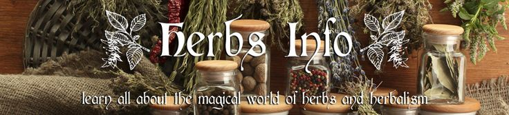 Herbs Info - Learn About Herbs - Herbal Supplements, Plants and Products