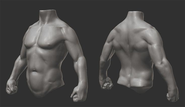 Anatomy study https://www.youtube.com/watch?v=WedHfS6hTXU