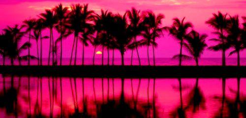header random tumblr pink  Buscar con Google  wallpapers marty  Pink sunset Pink summer Sunset