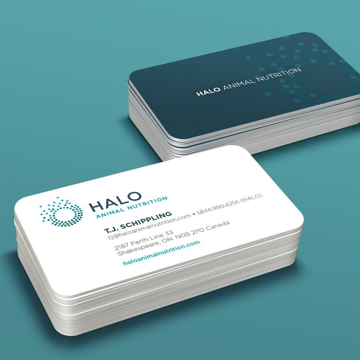 Halo Animal Nutrition #businesscard #branding #identity