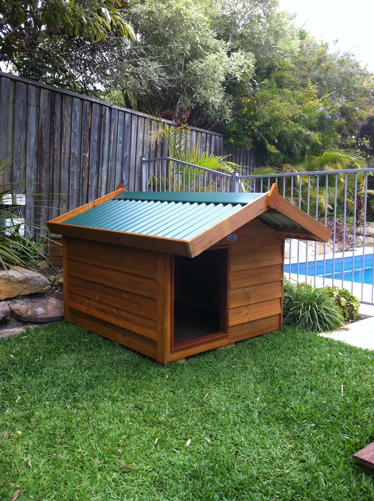A customers kennel!