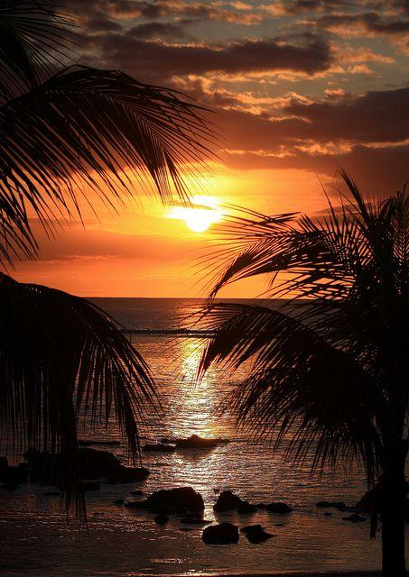 ☀ Tropical Sunset | Mauritius ☀ (http://www.facebook.com/BeautyOfMauritius)