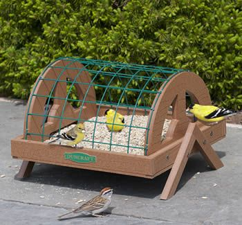 looks squirrel resistant to me if you mount it! Duncraft.com: Eco-Strong Haven Ground Platform