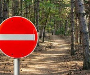 Θεσπρωτία: Απαγόρευση της κυκλοφορίας οχημάτων σε Εθνικούς Δρυμούς Δάση και ευπαθείς περιοχές λόγω του κινδύνου εκ των πυρκαγιών