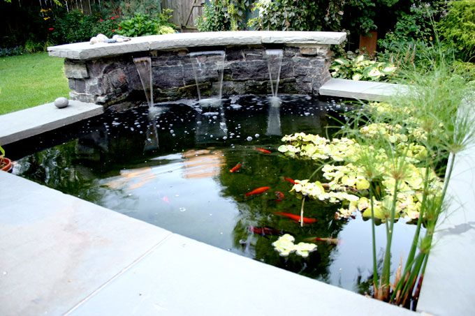 17 best ideas about pond design on pinterest ponds for Garden pond design and construction