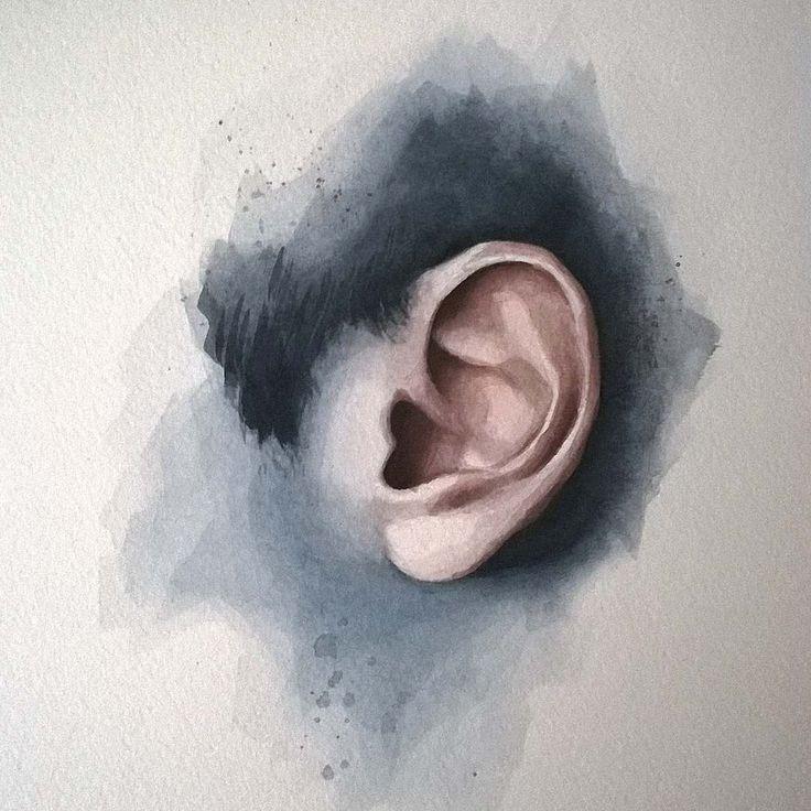 "Páči sa mi to: 2,466, komentáre: 7 – Miroslav Zgabaj (@miro_z_art) na Instagrame: ""Ear watercolor study  #ear #study #watercolor #painting #sketch #art #watercolorpainting…"""