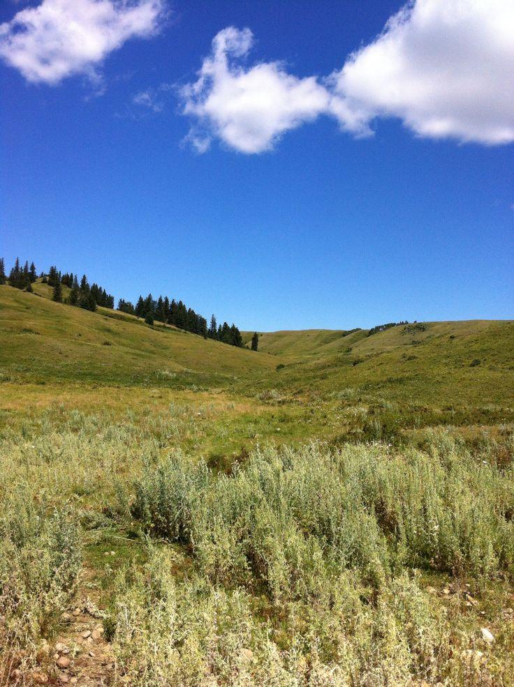 Cypress Hills Saskatchewan 2017