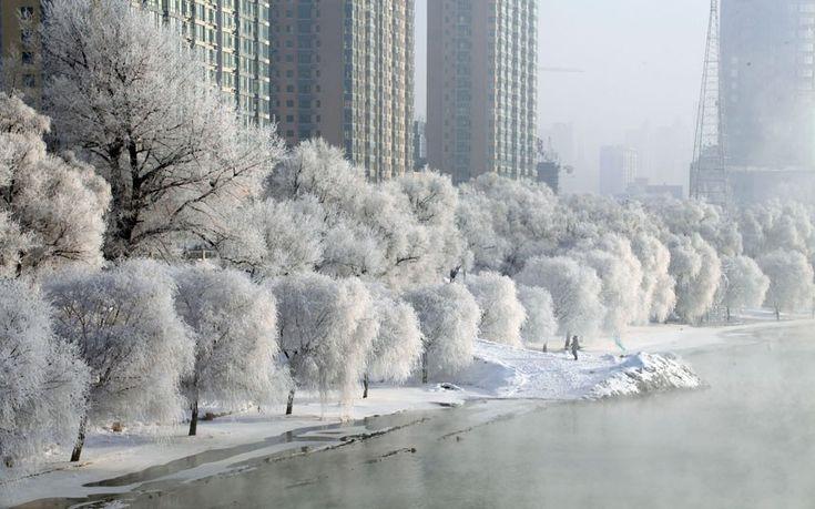 breath taking winter lansdscape in Jilin, China