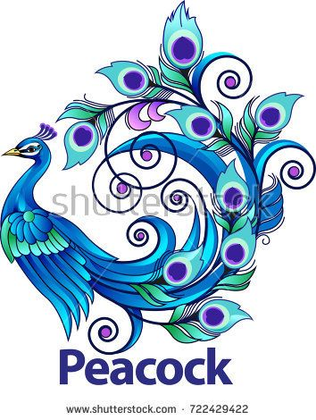 Vector illustration, modification peacock as a symbol