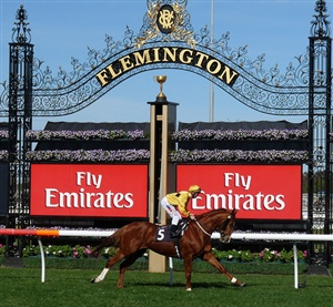 melbourne cup and spring racing