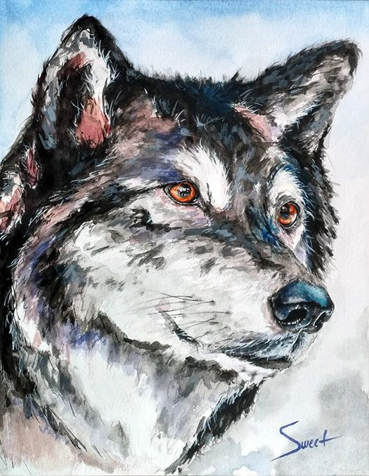 Wolf art watercolor animal painting wildlife painting animal art print by SignedSweet on Etsy