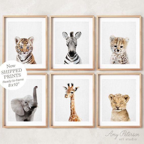 Baby Safari Animals For Nursery Animal Wall Art Nursery Etsy In 2021 Animal Wall Art Nursery Animal Nursery Nursery Room Boy